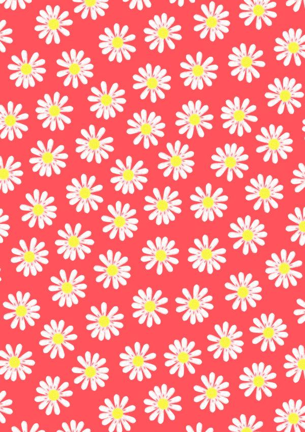 Geschenkpapier Blumen Gänseblümchen Neon