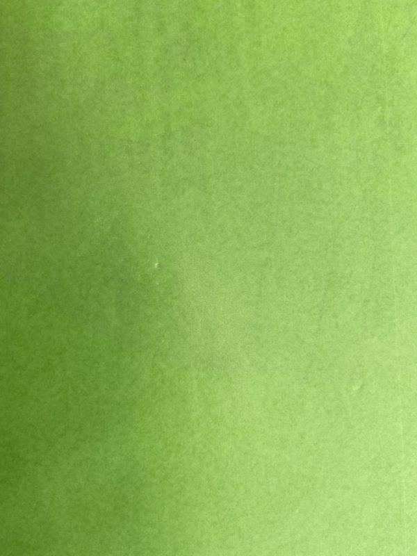 Bedrucktes Tissue-Papier Grün auf Rolle