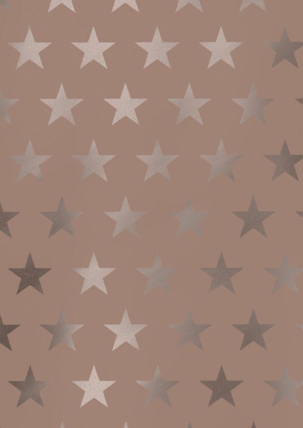 Weihnachts-Geschenkpapier Sterne Gold Rose