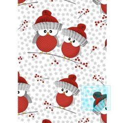 Geschenkpapier Weihnachten Sterne Eulen C4052