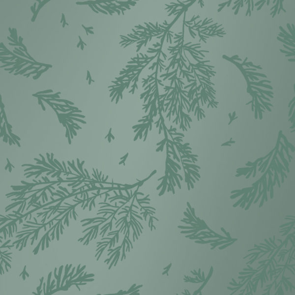 Grünes Geschenkpapier mit Blättern Winterleaves
